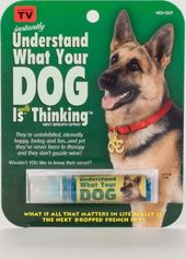 Understand Your Dog Breath Mints