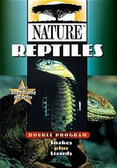 Nature - Reptiles (Snakes + Lizards)