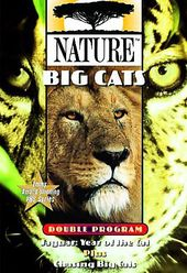 Nature - Big Cats