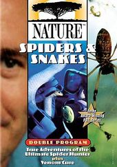 Nature - Spiders & Snakes