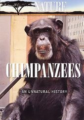 Nature - Chimpanzees: An Unnatural History