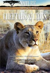 Nature - Cheetahs and Lions
