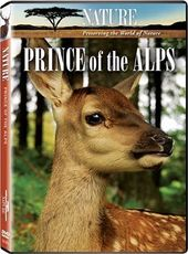 Nature - Prince of the Alps