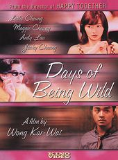 Days of Being Wild (A Fei jing juen)