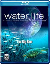 Water Life: The Big Blue (Blu-ray)