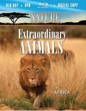 Nature - Extraordinary Animals: Africa (Blu-ray)