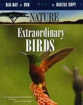 Nature - Extraordinary Birds (Blu-ray + DVD)