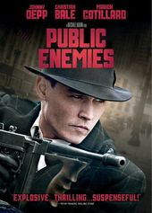 Public Enemies (Widescreen)