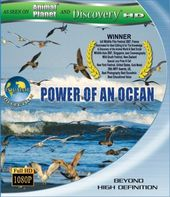 Equator Collection - Power of an Ocean (Blu-ray)