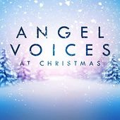 Angel Voices at Christmas (3-CD)