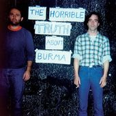 The Horrible Truth About Burma (2-LPs w/DVD)