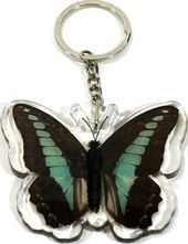 Blue Bottle Butterfly - Keychain
