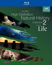 The BBC High Definition Natural History