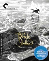 The Black Stallion (Blu-ray)
