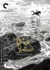 The Black Stallion (2-DVD)