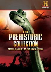 Prehistoric Collection: From Dinosaurs To The
