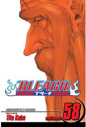 Bleach 58: The Fire