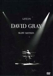David Gray - Live in Slow Motion