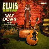 Way Down in the Jungle Room (2-CD)