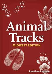 Card Games/General: Animal Tracks of Midwest