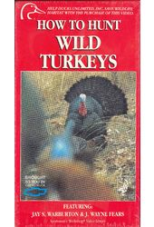 How to Hunt Wild Turkeys