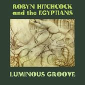 Luminous Groove (5-CD)
