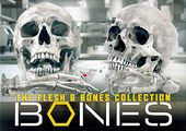 Bones - Flesh & Bones Collection (66-DVD)