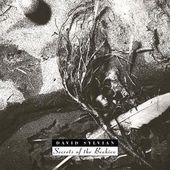 Secrets of the Beehive [Reissue]