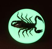 Glow in the Dark Black Scorpion - Dome Paperweight