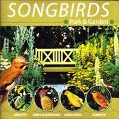 Songbirds - Park & Garden