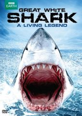 Great White Shark: A Living Legend