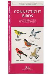 Connecticut Birds: A Folding Pocket Guide to