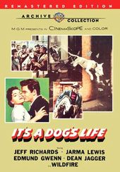It's a Dog's Life (Widescreen)