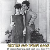 Guys Go Pop! 1965 (26 Obscure Teen/Pop/Rock N