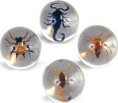 Scorpion and Spider - Marbles (set of 4)