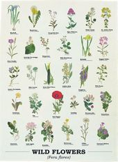 Wild Flowers - Tea Towel