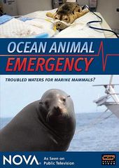 Nova - Ocean Animal Emergency