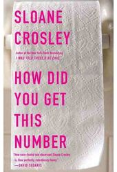 How Did You Get This Number: Essays
