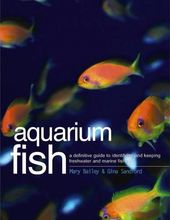 Aquarium Fish: A Definitive Guide to Identifying