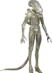Alien - 1/4 Scale Translucent Xenomorph