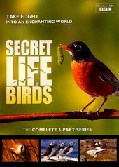 The Secret Life of Birds (2-DVD)