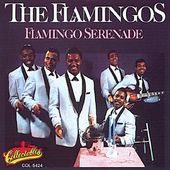 Flamingo Serenade