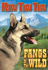 "Rin Tin Tin - Fangs of The Wild - 11"" x 17"" Poster"