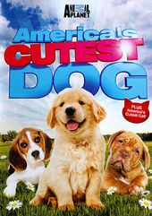 Animal Planet - America's Cutest Dog