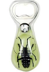 Glow in the Dark Asian Long Horned Beetle -