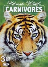 Ultimate Wildlife: Carnivores [Tin Case] (3-DVD)
