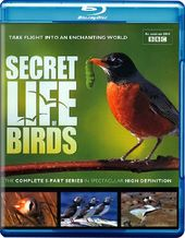 The Secret Life of Birds (Blu-ray)