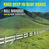Knee Deep in Blue Grass