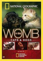 In the Womb - Cats and Dogs