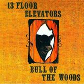 Bull Of The Woods (Snapper UK) (2-CD)